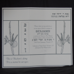 Invitation for Bar Mitzvah of Twins 1